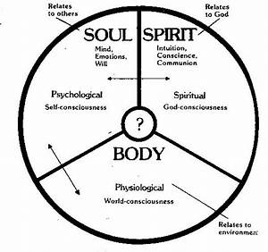 Spirit  Soul  U0026 Body