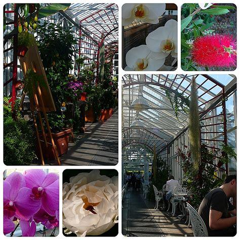 Botanischer Garten Berlin Cafe Lenne caf 233 lenn 233 botanischer garten berlin foto bild