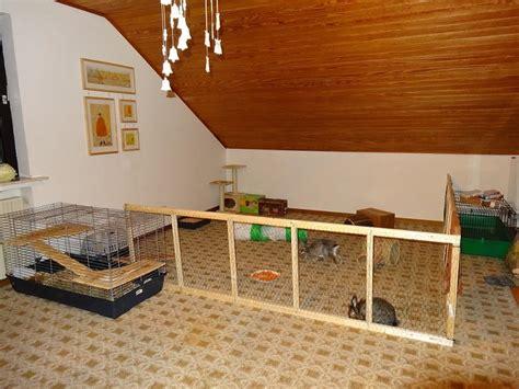 Pvc Boden Kaninchen by Pimp Das Innengehege Kaninchen