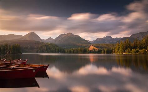 wonderful aesthetic of nature photography wallpaper
