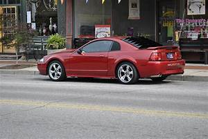 crazycavy45 2002 Ford MustangGT Coupe 2D Specs, Photos, Modification Info at CarDomain