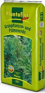 Npk Dünger Zusammensetzung : erden lensing plantaflor ~ Frokenaadalensverden.com Haus und Dekorationen