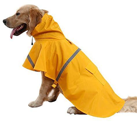 reviews    dog coats  labs   large breeds