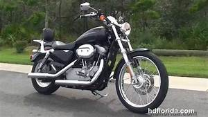 Used 2007 Harley Davidson Sportster 883 Custom Motorcycles For Sale