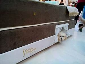this mattress has a dog bed built into the side of it With dog bed inside mattress