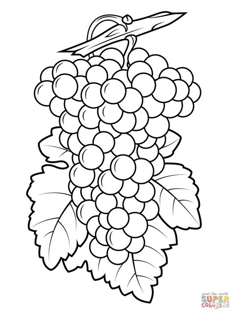 Grape Leaf Coloring Pages