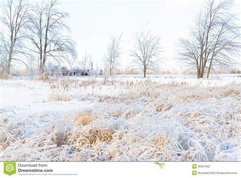 Bright Snowy Farmers Field Wintertime Stock Photography