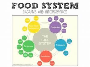 Calam U00e9o - Food System