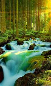 Most, Beautiful, Nature, Wallpapers, Wallpapers, Zone, Desktop