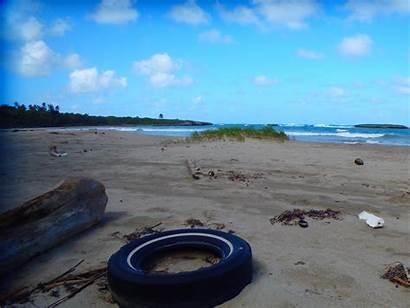 Debris Caribbean Noaa Marine Cleaning Program Beach