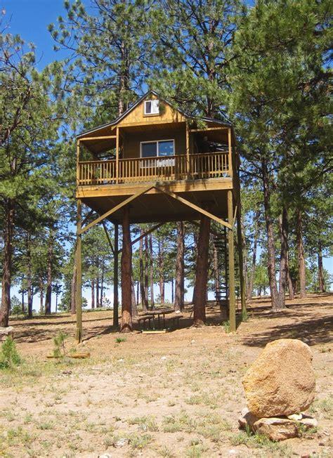 cool tree house  truchas nm high road artist