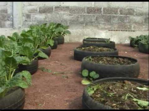 siembran verduras en llantas de autos en ecatepec youtube