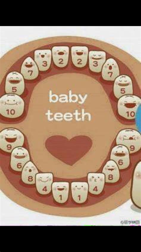 If Youve Ever Wondered If Your Babies Teeth Are Coming In