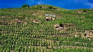 Wine republic breakthru join forces creating billion ...