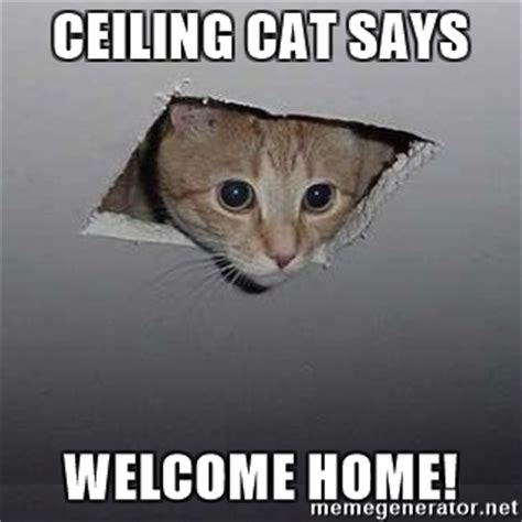 Welcome Home Meme - ceiling cat says welcome home ceiling cat meme generator