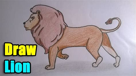 draw  lion youtube