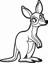 Kangaroo Coloring Pages Marsupial Baby Printable Wecoloringpage Jack Getcolorings 59kb 1200 sketch template
