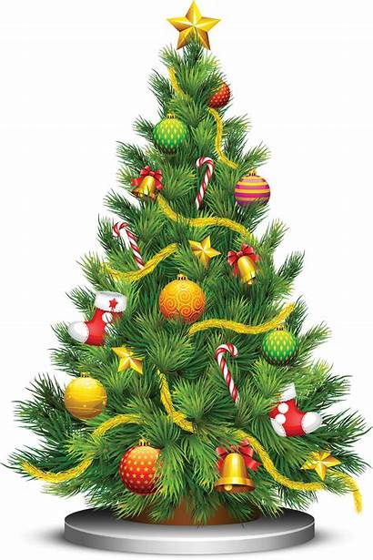 Tree Christmas Web