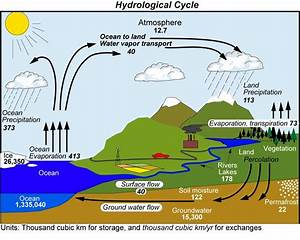 Water Cycle2