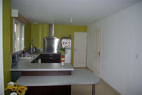 cuisine peinte en vert changer de déco mur de cuisine meubles sont de couleurs