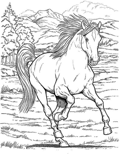 realistic horse coloring pages  getcoloringscom  printable colorings pages  print