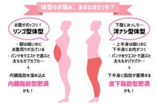 内臓 脂肪 を 落とす 方法