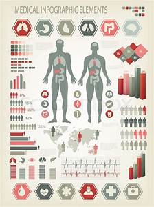 Medical Infographics Elements  Human