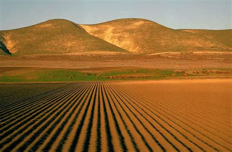 water stress   changing san joaquin valley public