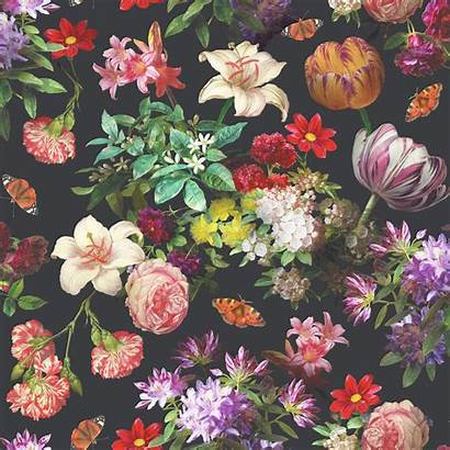 Floral Aesthetic Wallpapers Wallpaperaccess Resolution Cool Backgrounds