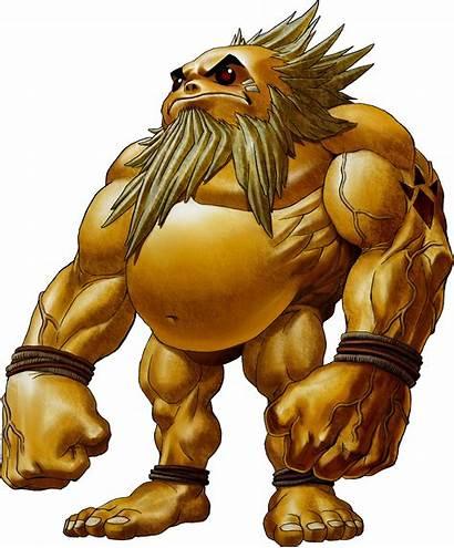 Zelda Impa Warriors Hyrule Sheik Goron Zora
