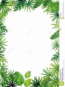 Jungle Leaf Border Pictures to Pin on Pinterest - ThePinsta