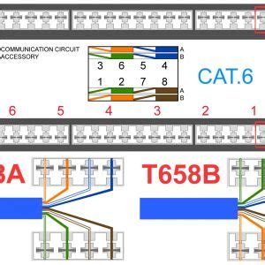 Rca Wall Plate Rj45 Connector Wiring Diagram by Cat 6 Wiring Guide Wiring Diagrams