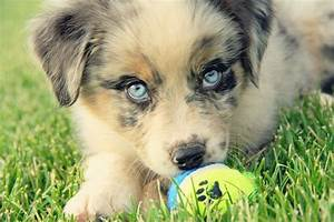 17 Best images about And The Eyes Have It on Pinterest ...