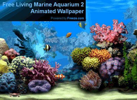 Living Marine Aquarium 2 Animated Wallpaper - free living marine aquarium 2 a 3d animated desktop