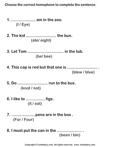 identify homophone for the given sentence worksheet turtle diary