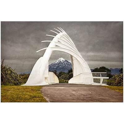 Te Rewa Bridge - Photography by Iain Scott