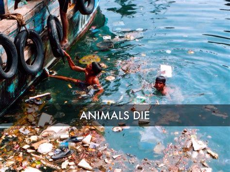 Ocean Pollution By Jordan Brewster