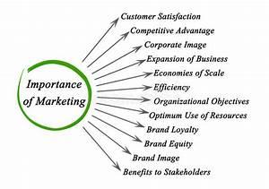 Importance Of Marketing Stock Photo  Image Of Objectives