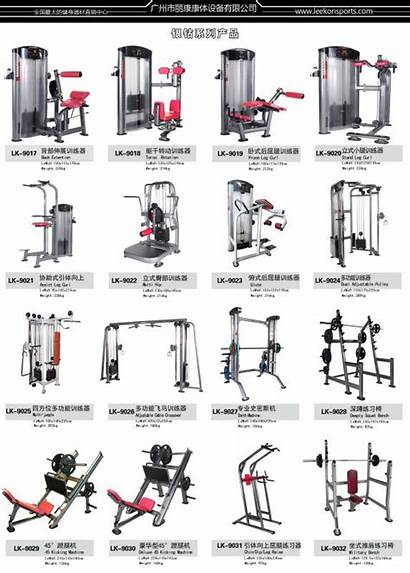 Equipment Machine Gym Exercise Fitness Weight Lifting