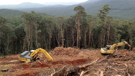 queensland landholders warned  massive fines
