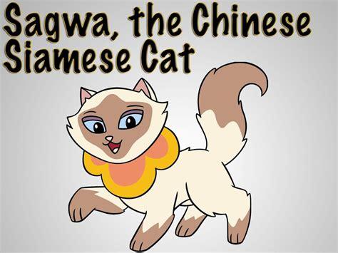 Sagwa Miao Google