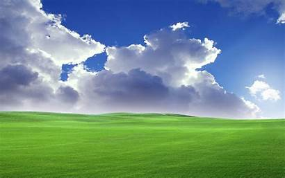 Bliss Desktop Widescreen Background Pixelstalk