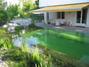 pool treppen schwimmteich freiburg yasiflor gartenbau