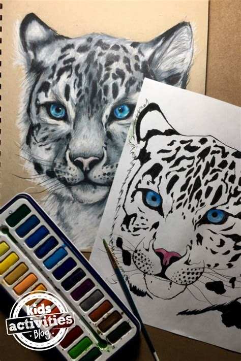 snow leopard coloring pages  kids  adults