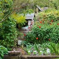 country vegetable garden ideas