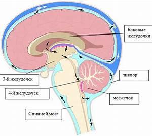 Повышенное внутричерепное давление лекарства лечение