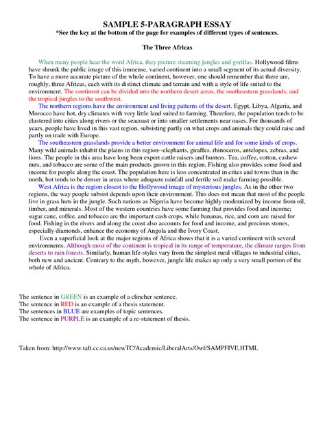 paragraph writing 5 paragraph essay exle on quotes quotesgram
