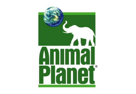 kartinki animal planet logo png picpoolru