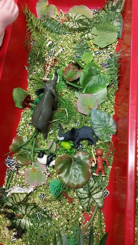 best 25 jungle preschool themes ideas on 649 | 85bdbeb121626c4655afbe707ff8e522 preschool jungle preschool classroom