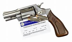 Illinois Agrees to Offer Paper Applications for Concealed ...